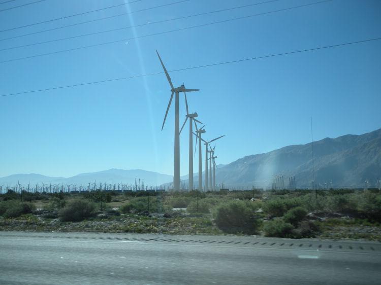 Tucson1